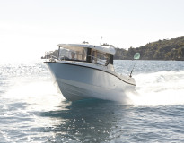 quicksilver Pilothouse 675 m/Mercury F150